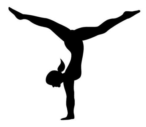 Gymnastics looks to states after bad showing at WPIALs