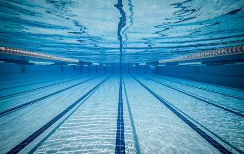 The Baldwin boys and girls swim teams defeated Carrick on Tuesday, and qualified in two more WPIAL events.