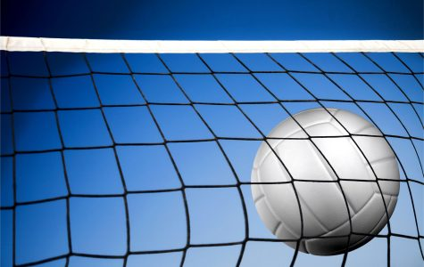 Boys volleyball loses tough section match