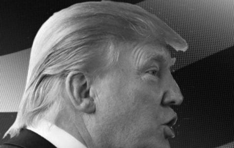 Trump makes better alternative