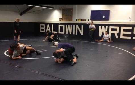 Baldwin Wrestlers