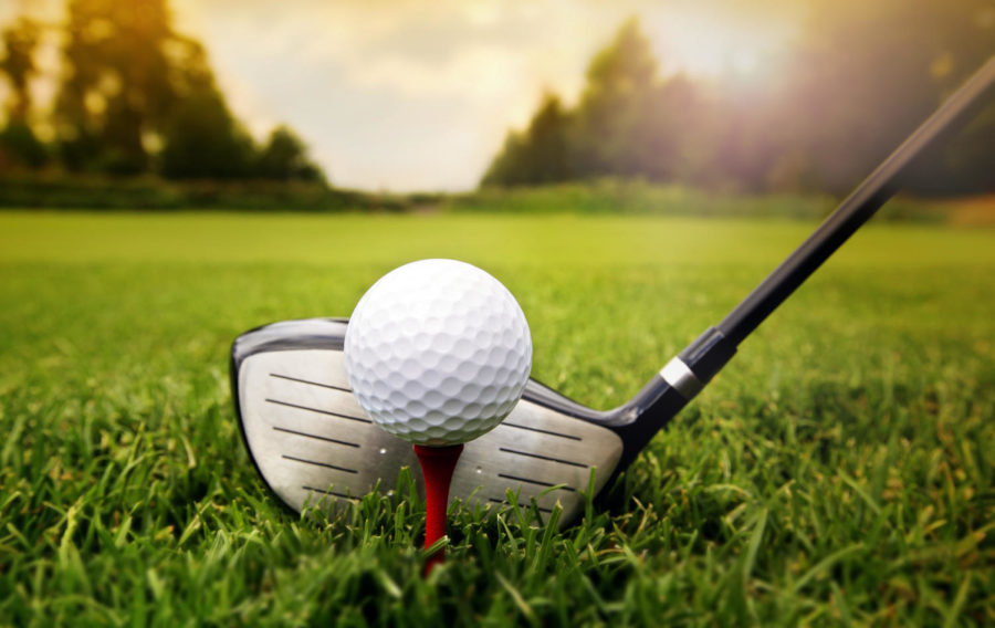 Golf team makes playoffs after win over Bethel Park