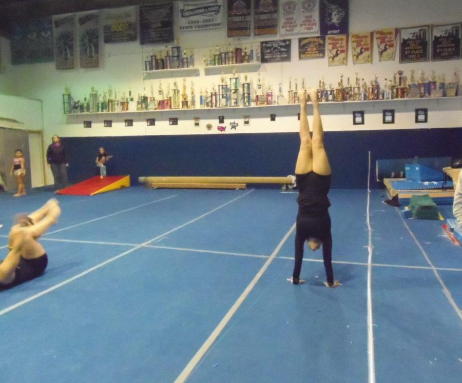 junior+Alaina+Wodarek%2C+senior+Haili+Cordell%2C+and+freshman+Hanna+Kuchnicki+placed+at+WPIALs.