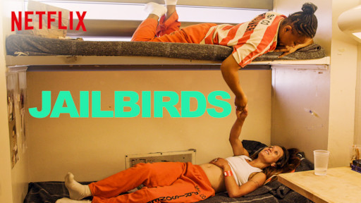 The Netflix series, Jailbird, depicts the life of inmates trapped in prison.