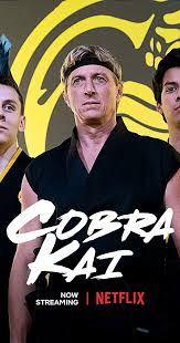"""Cobra Kai is an excellent addition to Netflix's original shows and the Karate Kid family."""