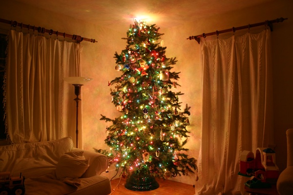 Easier to take care of as well as being reusable, fake Christmas trees are the better option for many people.