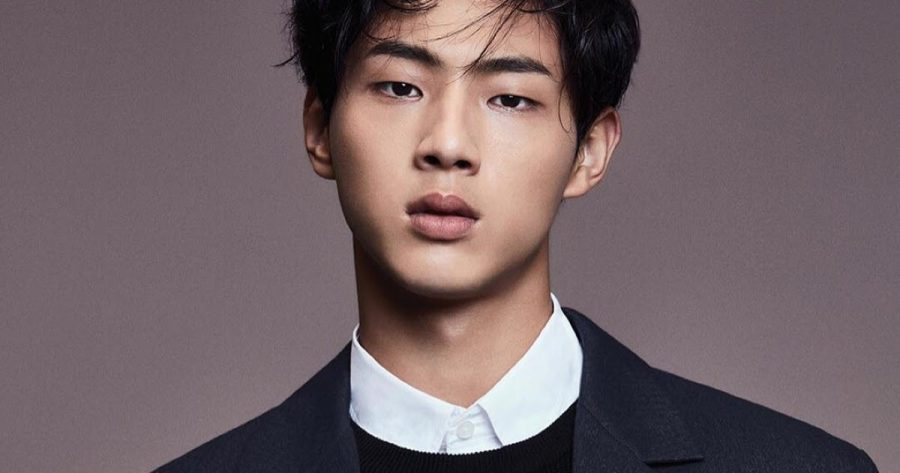 South Korean actor, Kim Ji Soo, was stripped of his role in a new series, after recent allegations were made about him regarding bullying and sexual harassment.